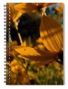Coreopsis Summer 2010 Spiral Notebook