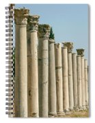 Corinthian Columns In Turkey Spiral Notebook