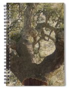 Cork Oak Tree Spiral Notebook