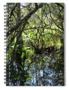 Corkscrew Swamp 3 Spiral Notebook