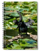 Cormorant And Turtle Spiral Notebook