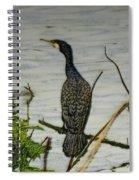 Cormorant Spiral Notebook