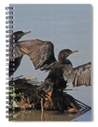 Cormorants Sunbathing Spiral Notebook