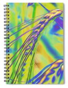 Corn Spiral Notebook
