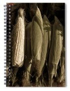 Corn On The Cob  Spiral Notebook