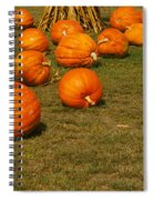 Corn Plants With Pumpkins In A Field Spiral Notebook