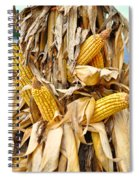 Corn Shock - Sign Of Autumn Spiral Notebook