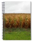 Cornfield And Farmhouse Spiral Notebook