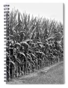 Cornfield Black And White Spiral Notebook