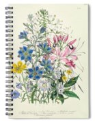 Cornflower Spiral Notebook