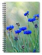 Cornflowers Spiral Notebook