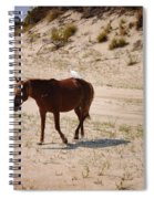 Corolla Hitchhiker Spiral Notebook