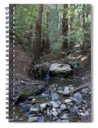 Corte Madera Creek On Mt. Tam In 2008 Spiral Notebook