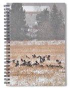 Corvus Field Spiral Notebook