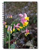 Corydalis In Garden Spiral Notebook