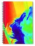 Cosmic Consciousness Too Spiral Notebook