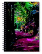 Cosmic Energy Of A Redwood Forest On Mt Tamalpais Spiral Notebook