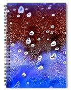 Cosmic Series 013 Spiral Notebook