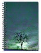 Cosmic Sky Winter Tree Spiral Notebook