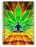 Cosmic Spiral Ascension 34 Spiral Notebook