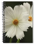 Cosmos And Hearts Spiral Notebook