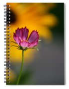 Cosmos And Suzies Spiral Notebook