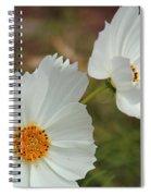 Cosmos Family Spiral Notebook