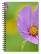 Cosmos Flower In Full Bloom And Bud Spiral Notebook