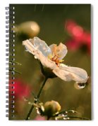 Cosmos In The Rain Spiral Notebook