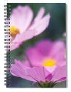 Cosmos Sensation - Fiori Rosa Spiral Notebook