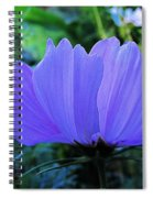 Cosmos Side Spiral Notebook