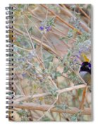 Costas Country Spiral Notebook