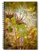 Cotten Grass Spiral Notebook