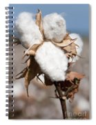 Cotton Bolls  Spiral Notebook