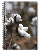 Cotton Southern Gold Spiral Notebook