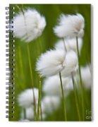 Cottonsedge Spiral Notebook