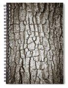 Cottonwood Bark 1 Spiral Notebook