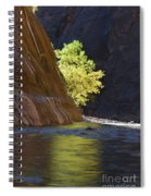 Cottonwood On The Virgin River Spiral Notebook