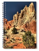 Cottonwood Rainbows Spiral Notebook