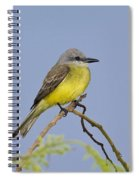 Couchs Kingbird Spiral Notebook