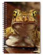 Couchs Spadefoot Toad Spiral Notebook