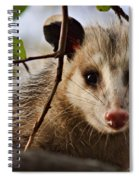 Coucou - Close-up Spiral Notebook