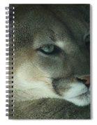 Cougar-7688 Spiral Notebook