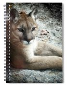 Cougar Country Spiral Notebook