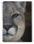 Cougar Digitally Enhanced Spiral Notebook