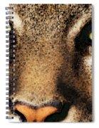 Cougar Eyes Spiral Notebook