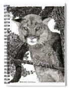 Cougar From Colorado Spiral Notebook