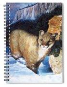 Cougar In Snow Spiral Notebook