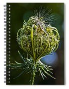 Countdown Spiral Notebook