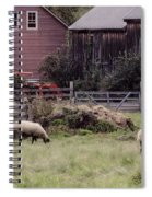 Counting Sheep Spiral Notebook